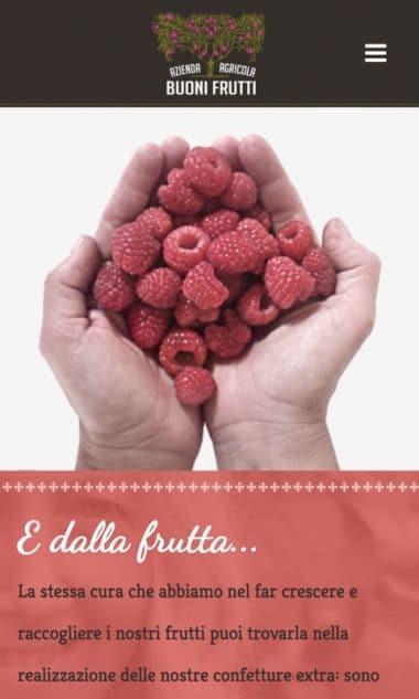 Versione responsive del sito internet Buoni frutti