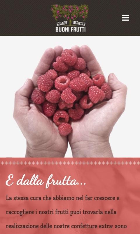 Versione responsive sito internet Buoni Frutti